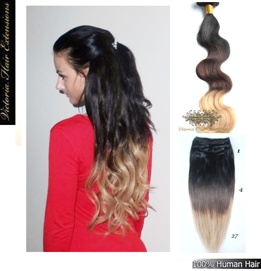 In ombre remy human hair extensions full head clip in ombre remy human hair extensions full head pmusecretfo Gallery