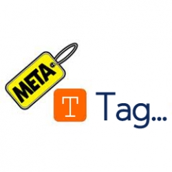Custom Meta Tag