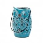 Blue Owl...