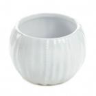 Pure Ceramic...